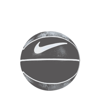 LEBRON PLAYGROUND BASKETBALL BLACK