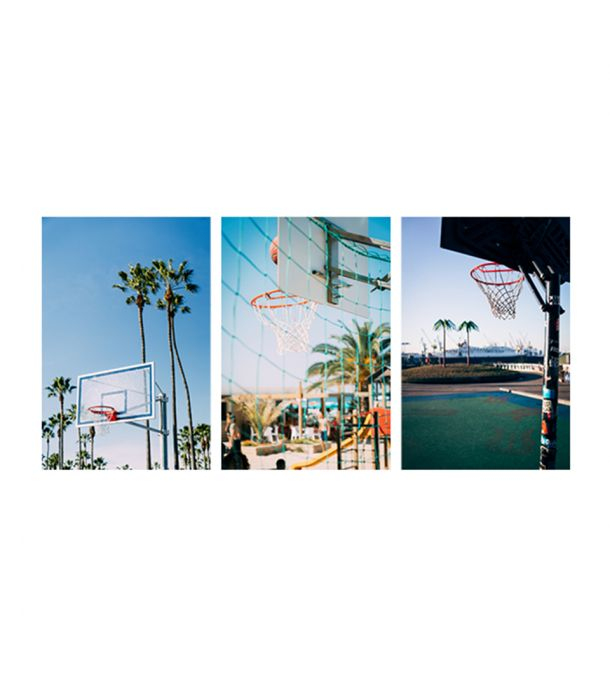 PALM VIBES SET 3 POSTCARD